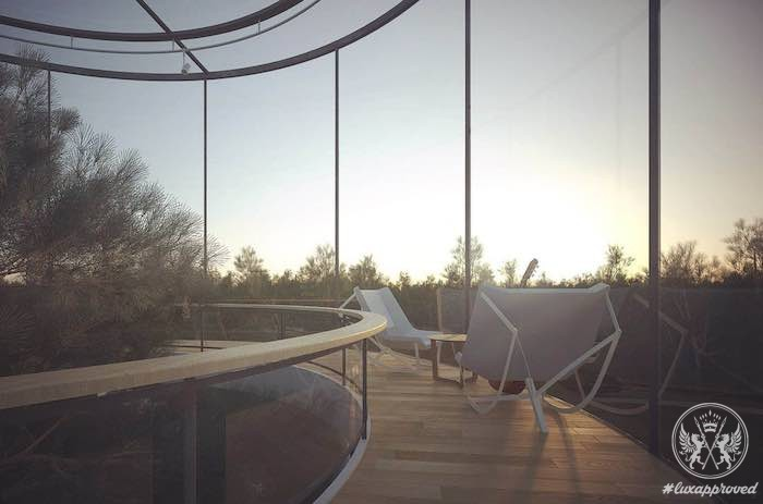This high tech tubular glass house by a masov architects is built around a tree lux expos - The tubular glass house ...