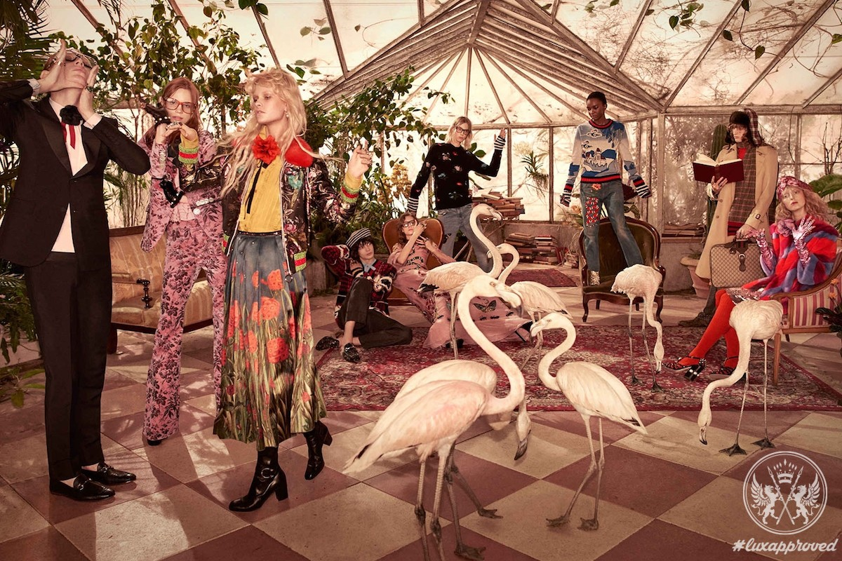 Flamingoes Steal the Spotlight in Gucci Pre-Fall 2016 Campaign
