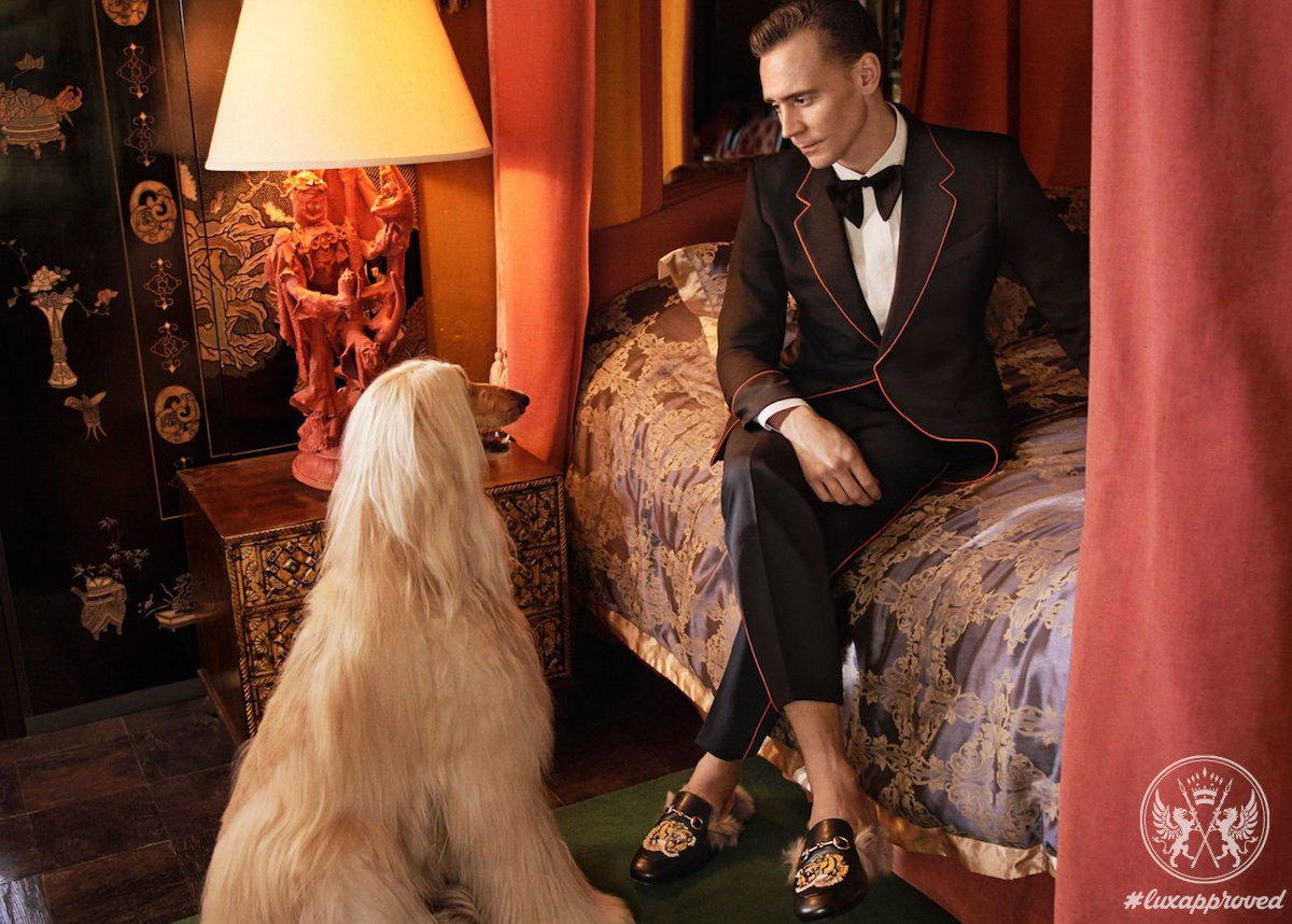 Tom Hiddleston For Gucci Cruise 2017 Men's Tailoring Campaign
